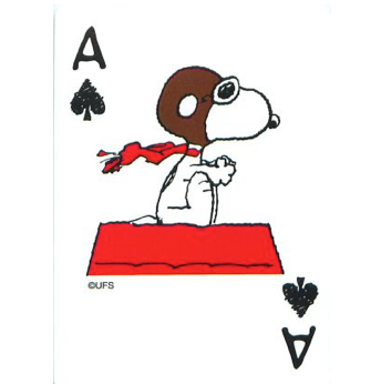 Snoopy schoppen aas